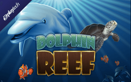 dolphin reef slot slot machine online