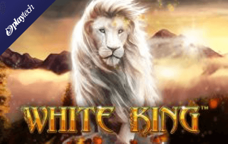 white king slot slot machine online