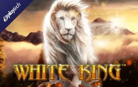 white king slot slot machine online